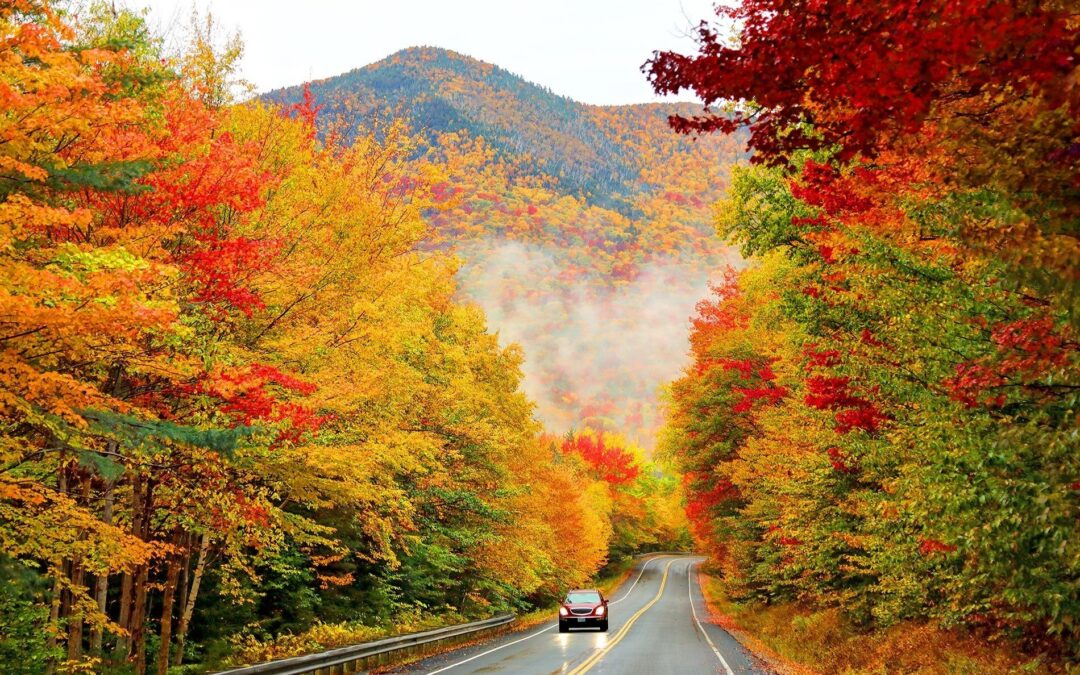 NATURE'S BRIGHTLY COLORED LANGUAGE-A FALL ROAD TRIP