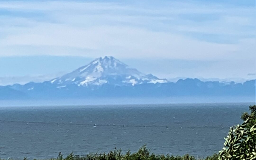 ALASKA – A WILDLIFE WONDERLAND ( PART ONE )