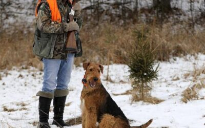 THE FASTEST GROWING SEGMENT OF THE HUNTING CROWD